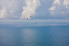 Blue water and sky. High resolution blue water and sky, birds in the sky royalty free stock image