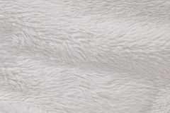 High Resolution fur furry white textured Stock Image