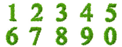 High resolution grass font collection Royalty Free Stock Images