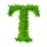 High resolution grass font isolated Royalty Free Stock Photography