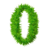 High resolution grass font isolated Royalty Free Stock Photo
