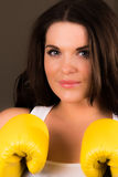 Beautiful female boxer Stock Images