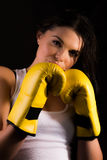 Beautiful female boxer Stock Photography
