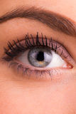 Portrait of a beautiful female eye Royalty Free Stock Photos