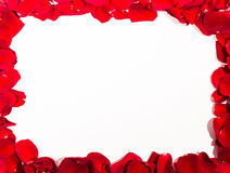 Romantic red rose petal frame Stock Photography