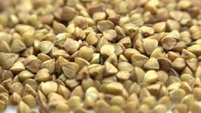 High Resolution Macro of Dry Buckwheat Grain. Dolly Shot. 4K UltraHD, UHD stock video