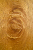 High resolution natural woodgrain texture Royalty Free Stock Photography