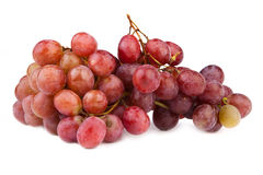 High resolution photo of dark grapes on white royalty free stock photo