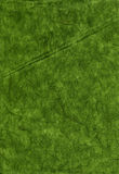 Rice Paper Texture - Green XXXXL Stock Photos