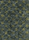 Rice Paper Texture - Yellow Polka Dots. High resolution scan of yellow polka dots embedded in dark gray rice paper Royalty Free Stock Photo