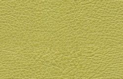 Seamless green leather texture royalty free stock photography