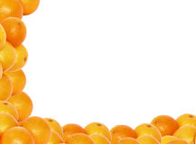 High resolution tangerine frame Royalty Free Stock Photo