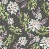 Vintage floral seamless pattern with watercolor succulents royalty free illustration