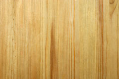 High resolution wood texture. Pine Royalty Free Stock Photos