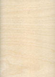 High resolution wooden background. High resolution scan wooden background Royalty Free Stock Photos