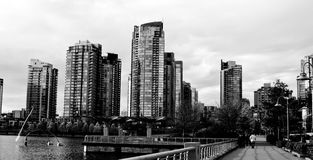 High rise black & white Royalty Free Stock Photography