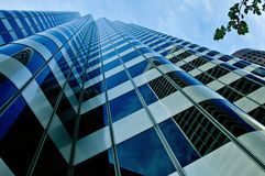 High-rise building. With branch Stock Photos