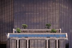 High-rise building with window boxes stock images