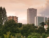 High Rise Buildings Near Green Leaf Trees Under White Sky during Daytime Royalty Free Stock Image
