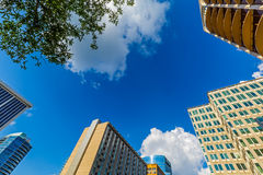 High-rise Buildings Stock Photography