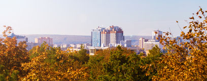 High-rise buildings and trees yellowed Stock Images