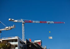 High rise cranes on construction site. High rise cranes on city office construction site Royalty Free Stock Photos