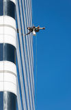 High Rise Window Washer Royalty Free Stock Photography