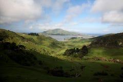 The High road to Dunedin, New Zealand Royalty Free Stock Photo