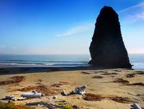 Oregon Pacific Coast, Amazing High Rock Ocean royalty free stock photos