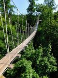 A high rope bridge over the forest floor at Refreshing Mountain Camp royalty free stock images