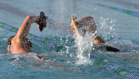 High schoo;l swimmers. High school breast stroke swimmers battle it out during a paddle session during an outdoor pool practice Stock Photos