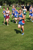 High School Boys Running in Cross Country Race Royalty Free Stock Photography