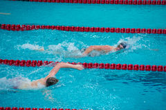 High School Boys Swimmers. From Lincolnway Central and Thornton Fractional race at a swim meet Stock Photos