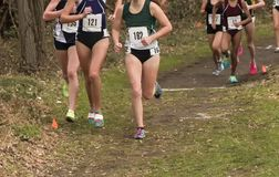 High School girls running a cross country race. High school girls running out of the woods during a cross country championship on a rainy afternoon in New York Royalty Free Stock Photos