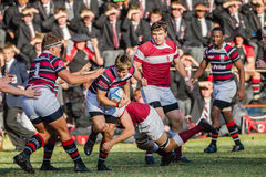 High School Rugby Action royalty free stock image