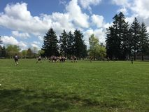 High School Rugby Game Royalty Free Stock Image