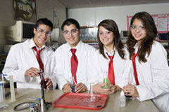 High School Students In Science Laboratory Royalty Free Stock Image