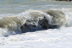 High sea wave. Stock Image