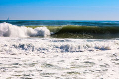 High sea wave  in sunny day Stock Images