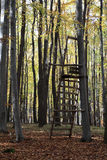 High Seat in a Forest Royalty Free Stock Photo