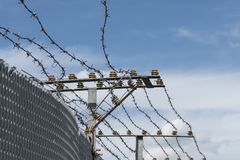 High Security Fence with electric barbed wire against a blue sky Royalty Free Stock Photos