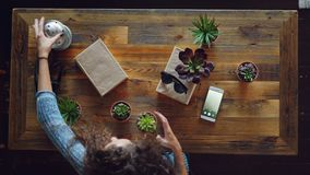 High shot of female designer organising things on wooden table getting ready to take flat lay pictures. Green plants. Sunglasses, modern smartphone and camera stock footage