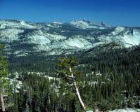 High Sierra Panorama Stock Photo