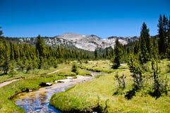 High Sierra Stream Stock Photos