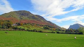High Snockrigg western slopes at Buttermere. In the autumn. The Lake District National Park, Cumbria, United Kingdom stock images