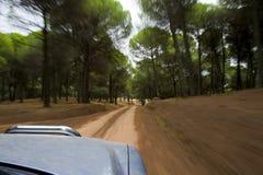 high speed автомобиля Стоковое фото RF