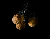 High speed photography walnuts splash in water healthy, nutshell,. Broken royalty free stock image