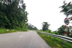 High speed running of forest road Stock Photos