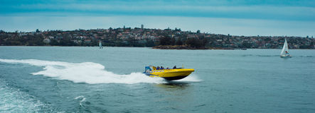 High Speed Tourist Boat, Sydney, Australia Royalty Free Stock Photo