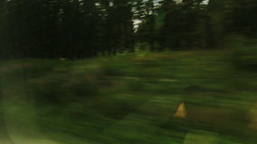 High-speed train at flickering trees (POV) Royalty Free Stock Images